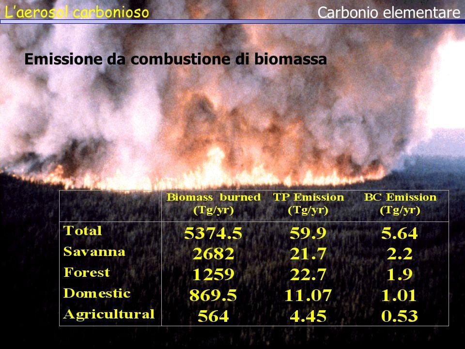 L'aerosol carbonioso Carbonio elementare Emissione da combustione di biomassa
