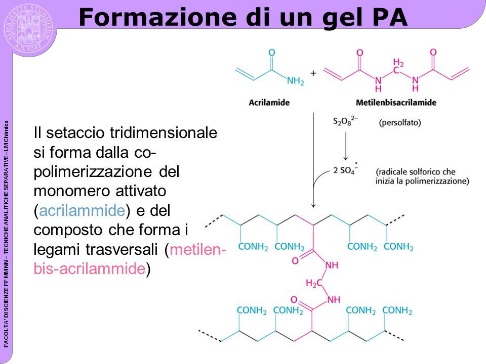 Formazione di un gel PA