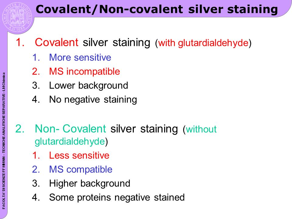 Covalent/Non-covalent silver staining