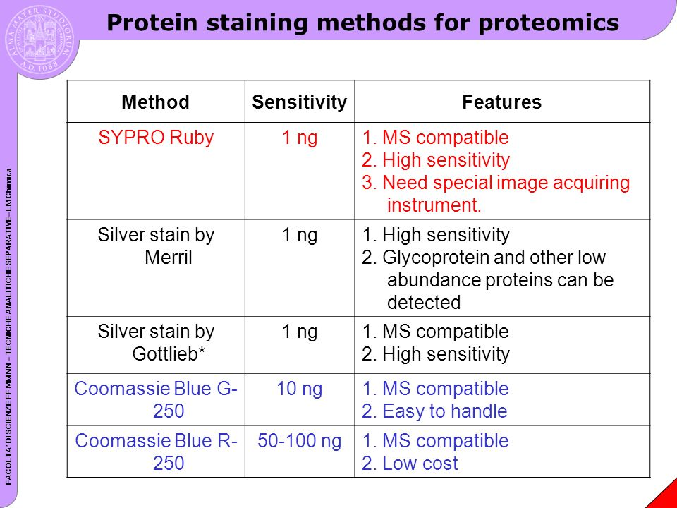 Protein staining methods for proteomics
