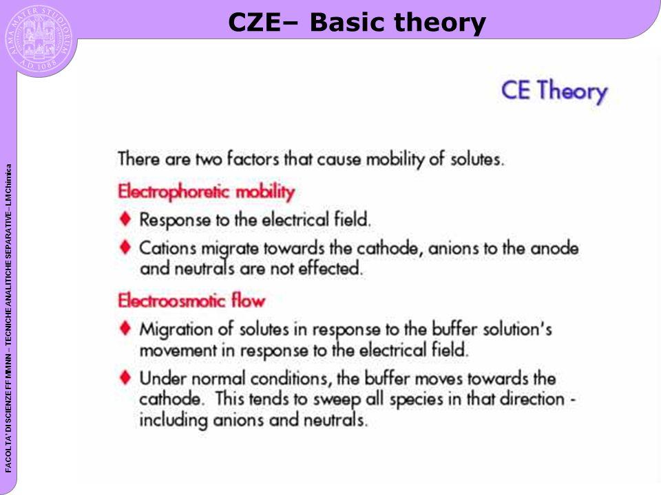 CZE– Basic theory