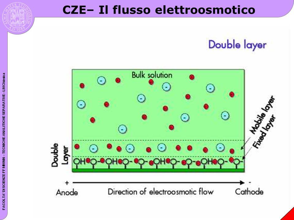 CZE– Il flusso elettroosmotico