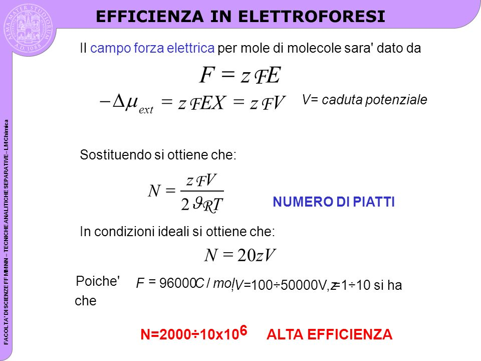 F z E = - = D m z EX V F N zV = 20 N z V T = F R 2 J