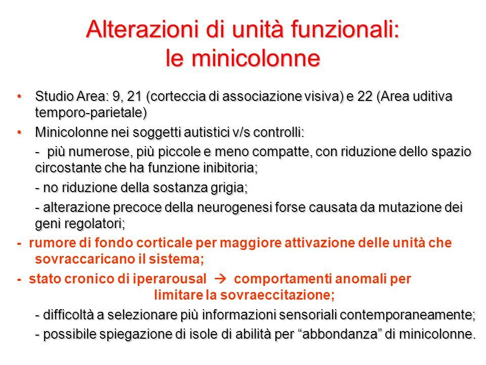 Alterazioni di unità funzionali: le minicolonne