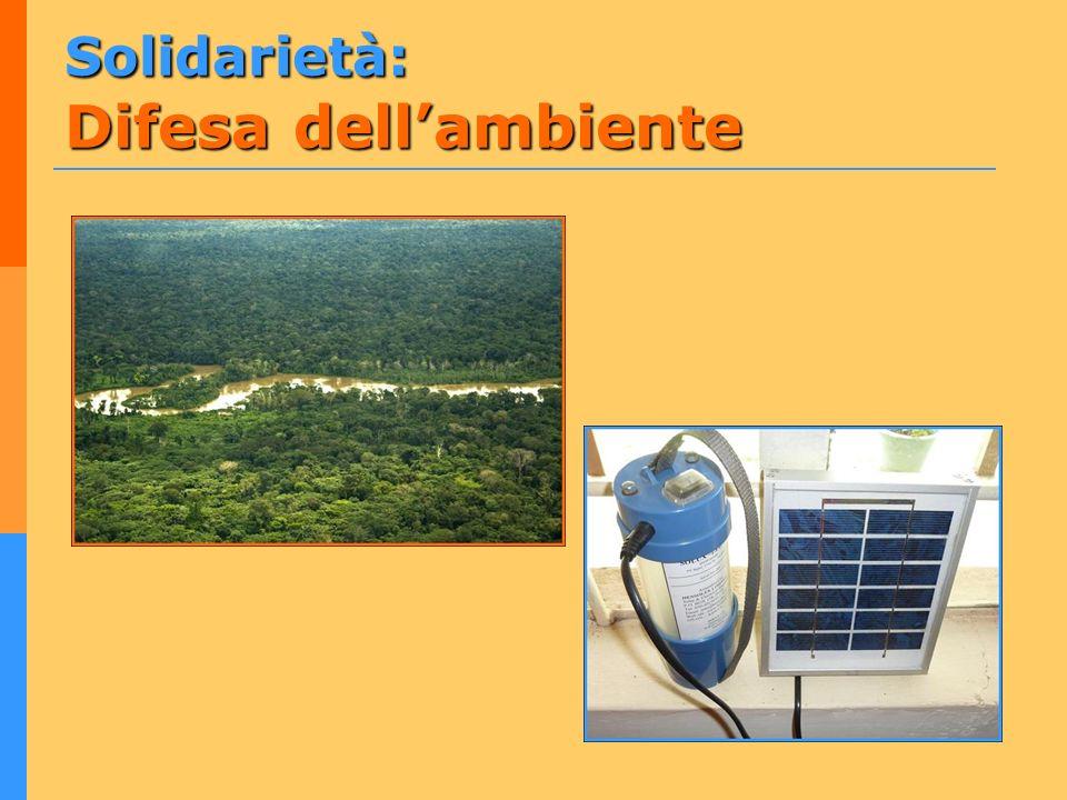 Solidarietà: Difesa dell'ambiente
