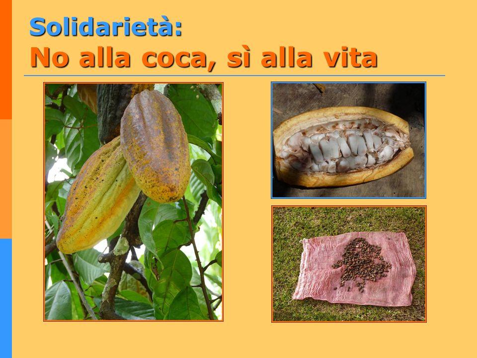 Solidarietà: No alla coca, sì alla vita