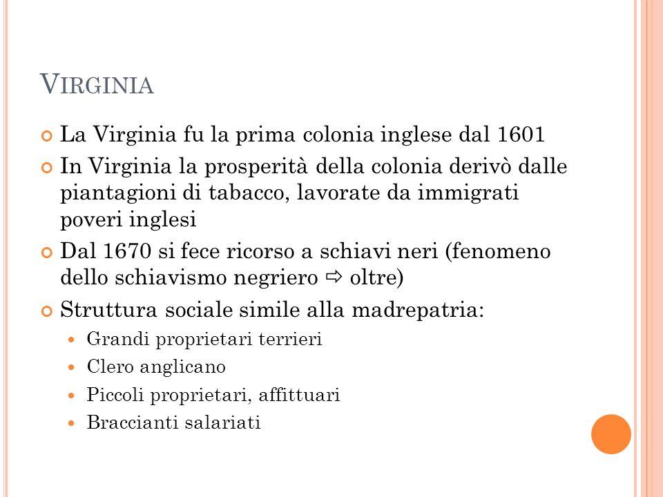 Virginia La Virginia fu la prima colonia inglese dal 1601