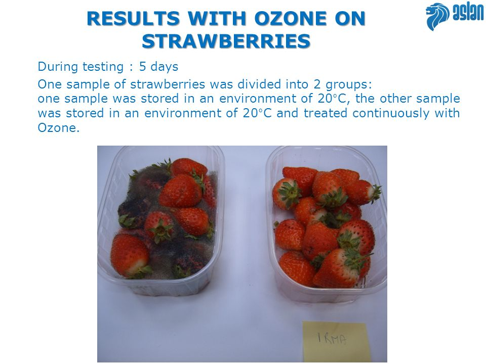 RESULTS WITH OZONE ON STRAWBERRIES