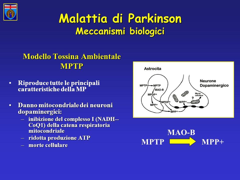 Malattia di Parkinson Meccanismi biologici