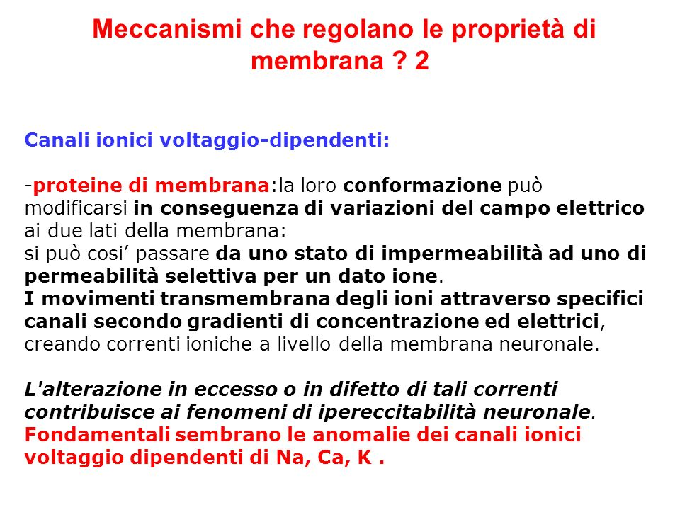 Meccanismi che regolano le proprietà di membrana 2