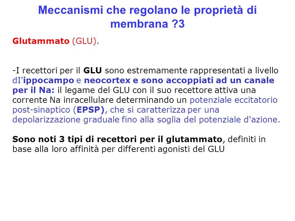 Meccanismi che regolano le proprietà di membrana 3