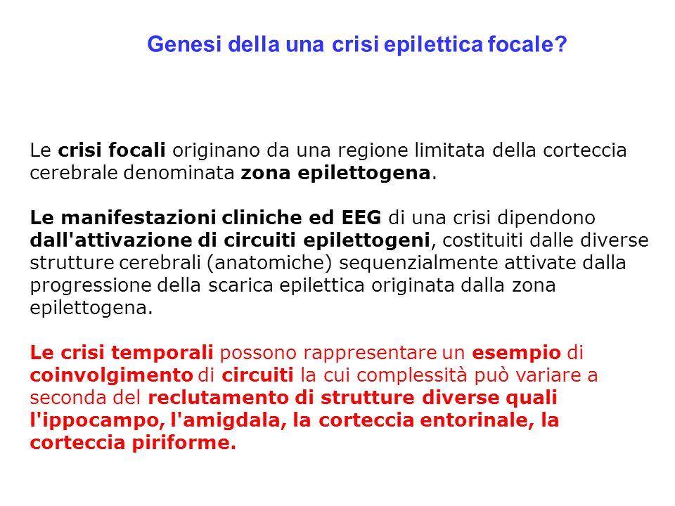 Genesi della una crisi epilettica focale