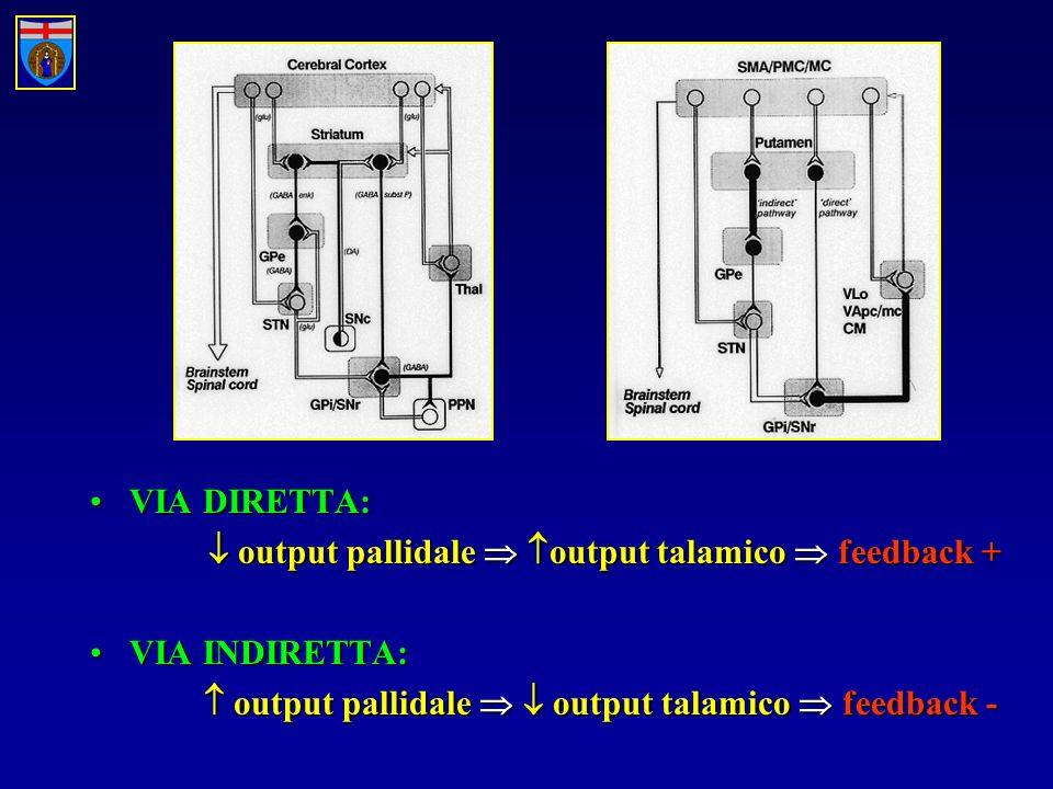 VIA DIRETTA:  output pallidale  output talamico  feedback + VIA INDIRETTA:  output pallidale   output talamico  feedback -