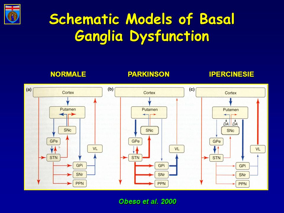 Schematic Models of Basal Ganglia Dysfunction