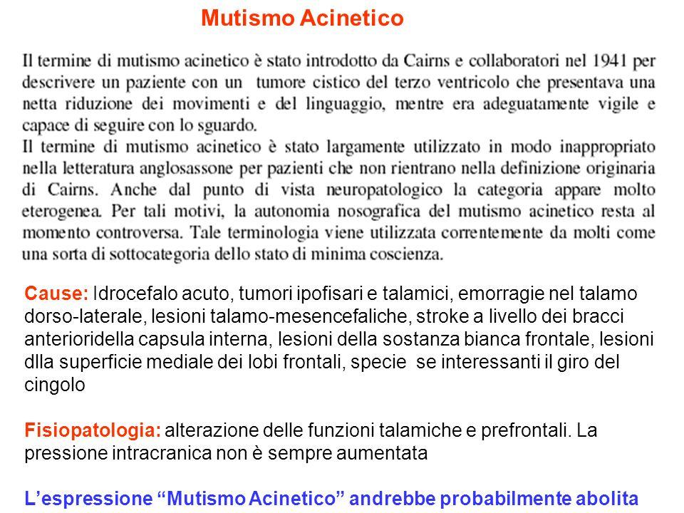 Mutismo Acinetico