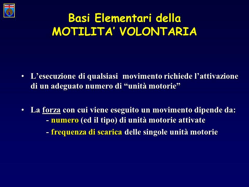 Basi Elementari della MOTILITA' VOLONTARIA