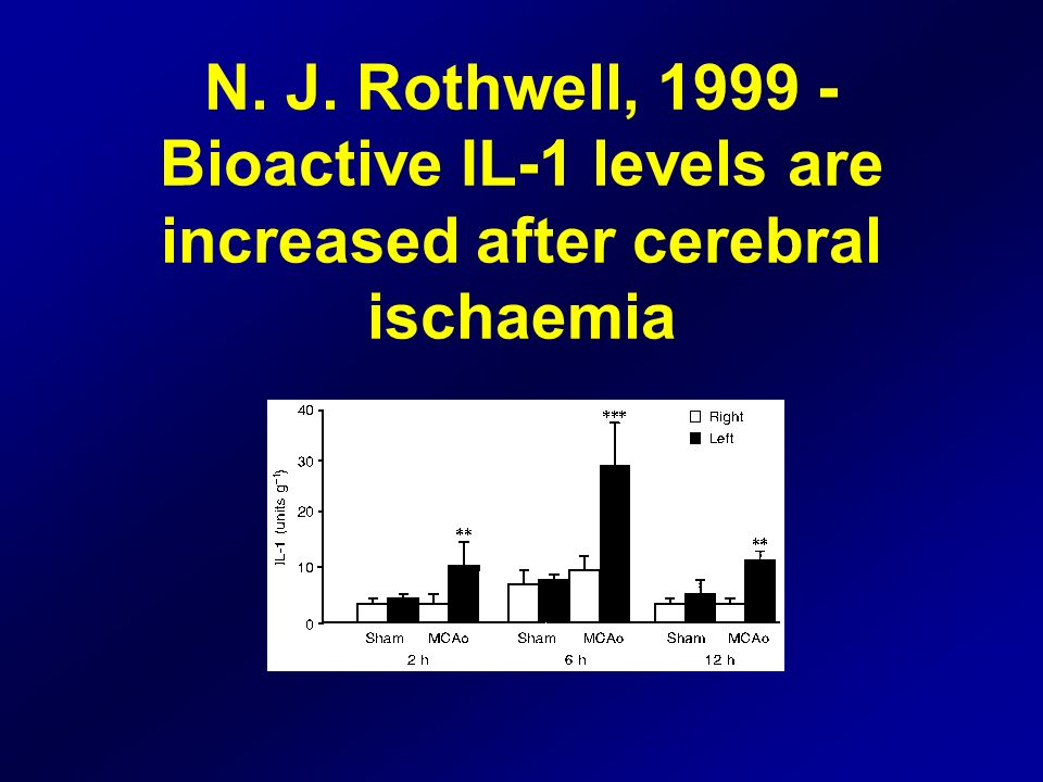 N. J. Rothwell, 1999 - Bioactive IL-1 levels are increased after cerebral ischaemia