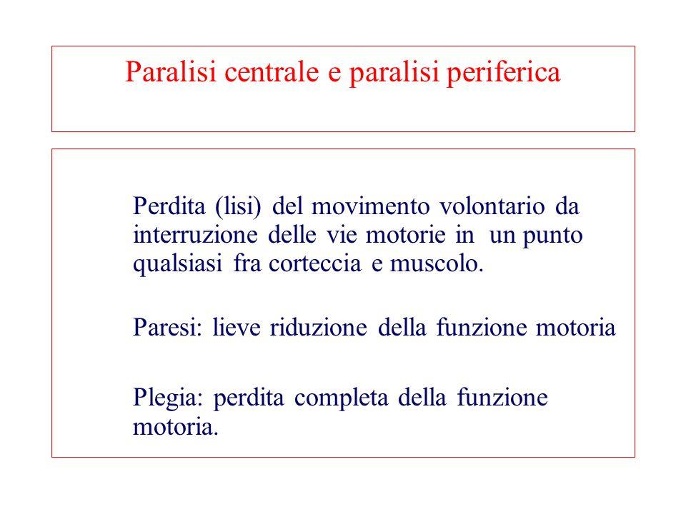 Paralisi centrale e paralisi periferica