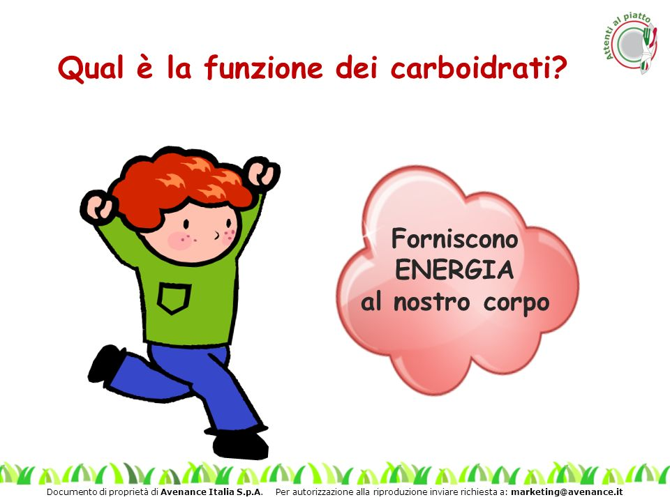 Qual è la funzione dei carboidrati
