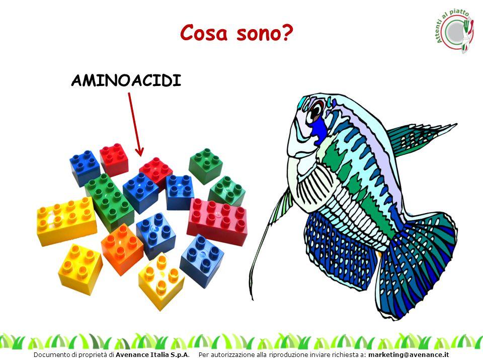 Cosa sono AMINOACIDI L' insegnante: Sono strutture costituite da singole unità chiamate aminoacidi
