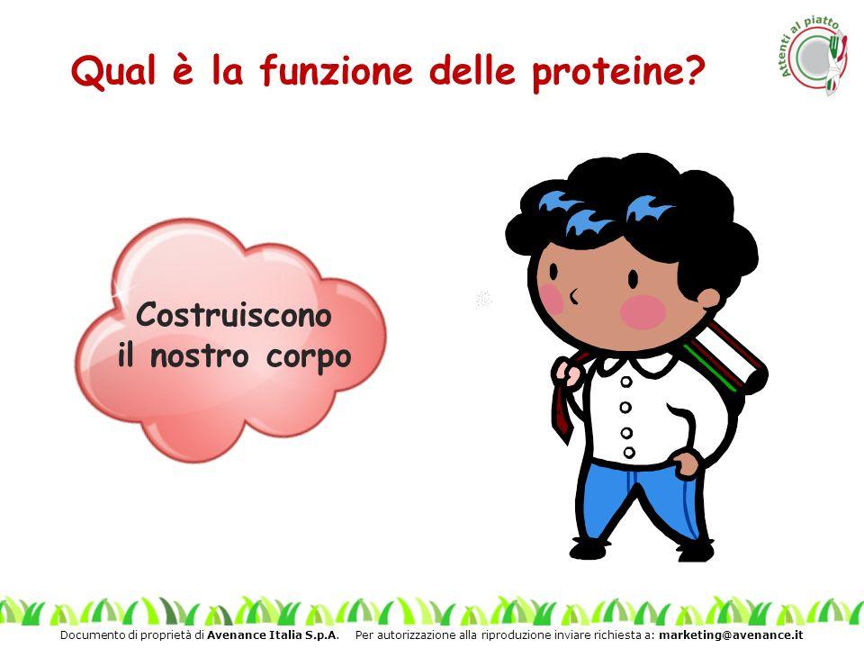 Qual è la funzione delle proteine