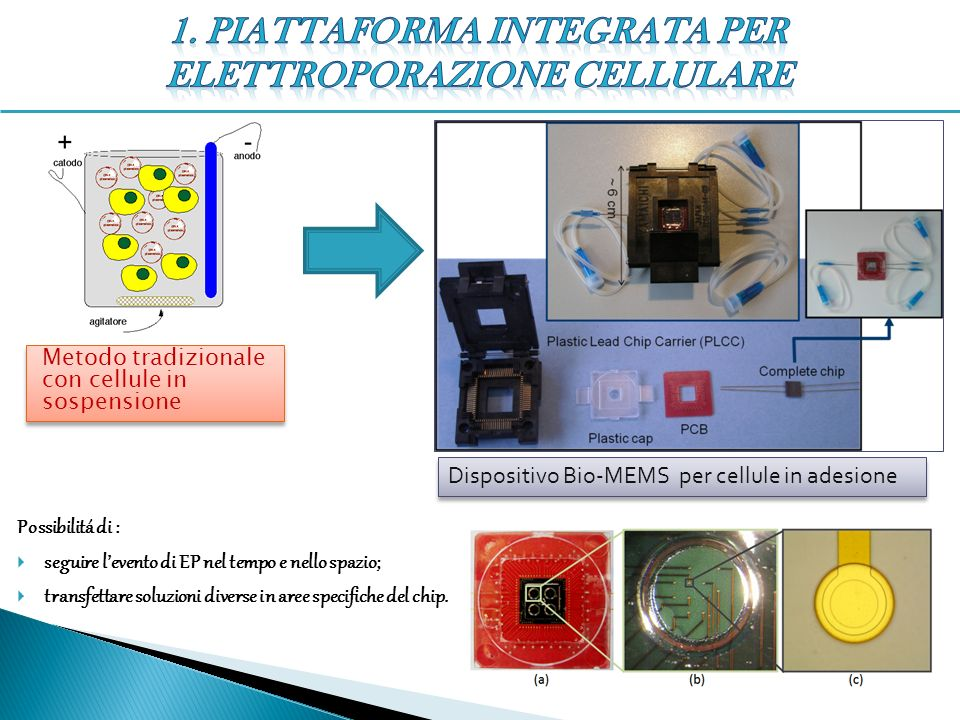 1. Piattaforma integrata per elettroporazione cellulare