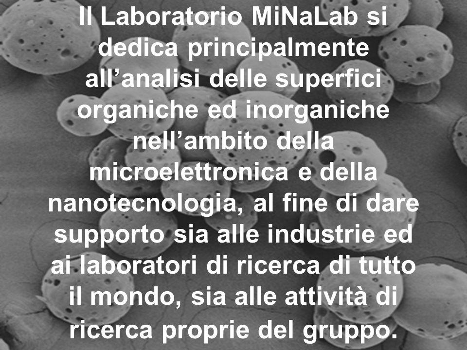 Il Laboratorio MiNaLab si dedica principalmente all'analisi delle superfici organiche ed inorganiche nell'ambito della microelettronica e della nanotecnologia, al fine di dare supporto sia alle industrie ed ai laboratori di ricerca di tutto il mondo, sia alle attività di ricerca proprie del gruppo.