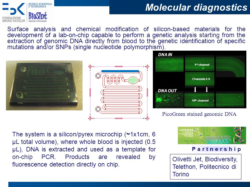 Biosint unit superfici ed interfacce biofunzionali cecilia for Lab on a chip template