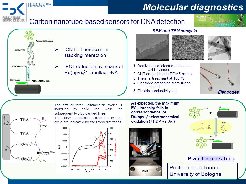 Molecular diagnostics Research overview