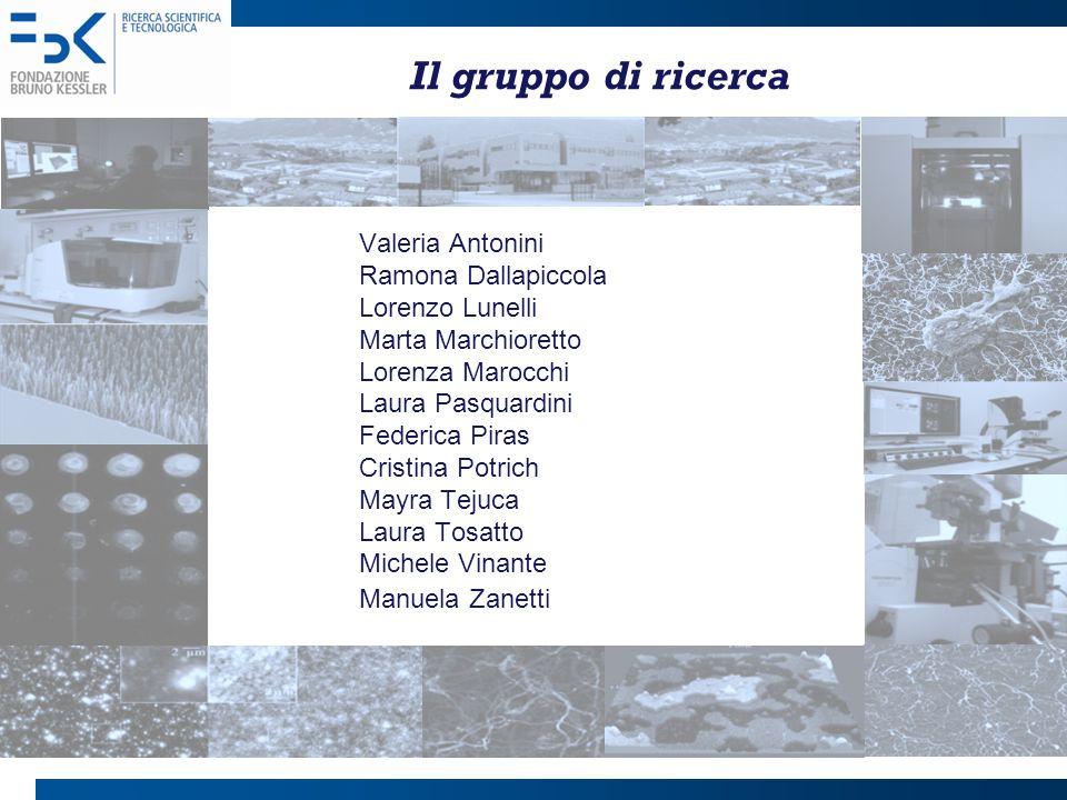 Il gruppo di ricerca Valeria Antonini Ramona Dallapiccola