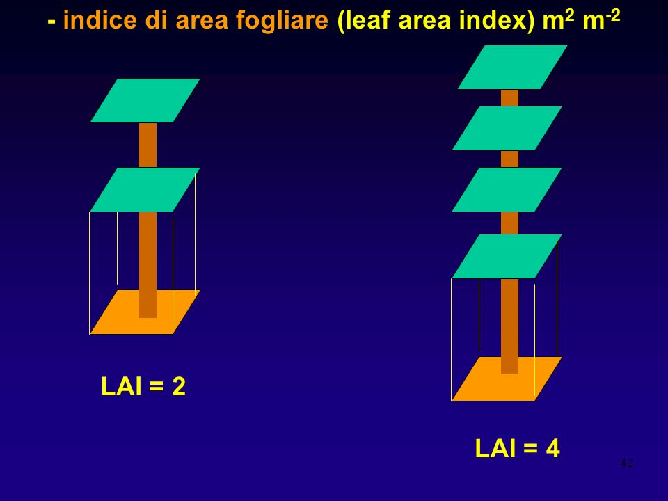 - indice di area fogliare (leaf area index) m2 m-2