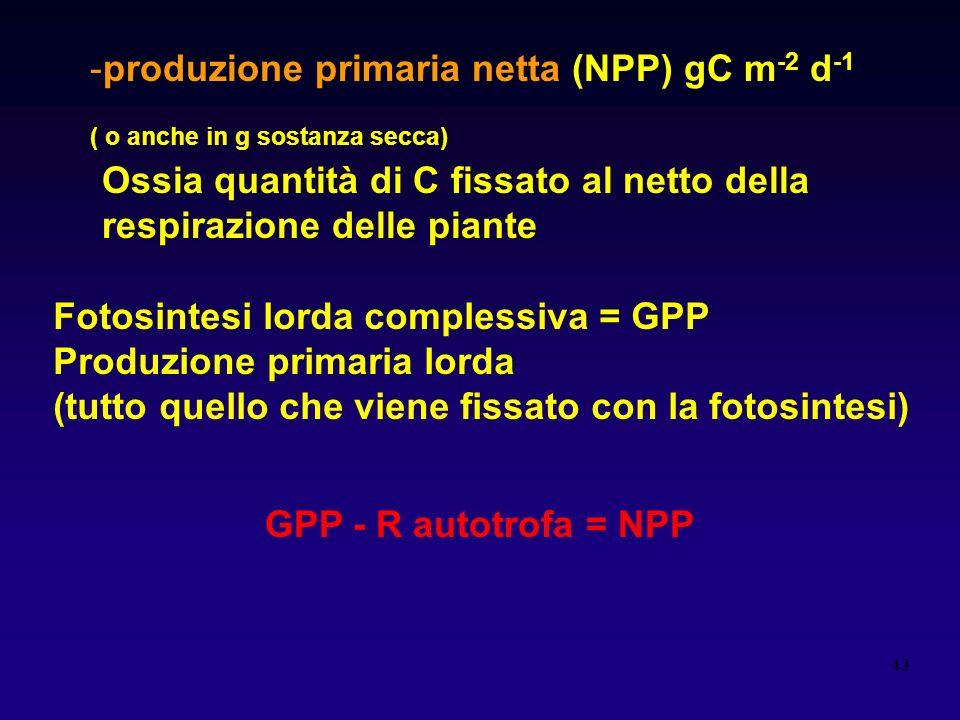 produzione primaria netta (NPP) gC m-2 d-1