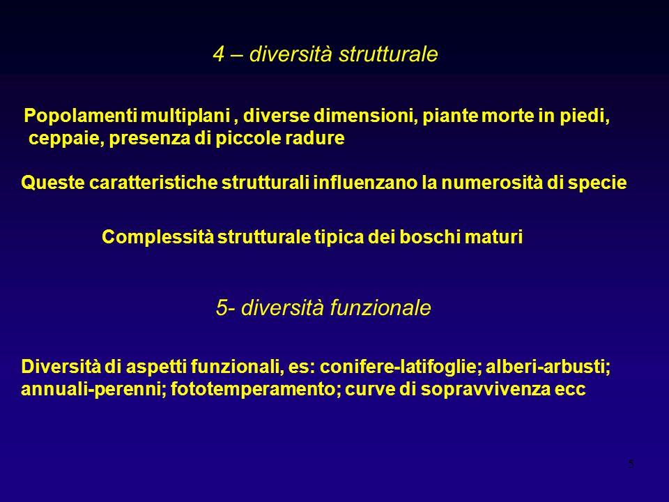 4 – diversità strutturale