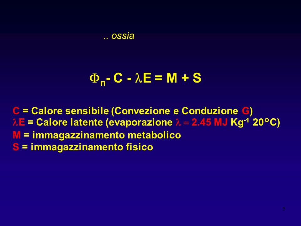 .. ossia n- C - lE = M + S. C = Calore sensibile (Convezione e Conduzione G) lE = Calore latente (evaporazione l = 2.45 MJ Kg-1 20°C)