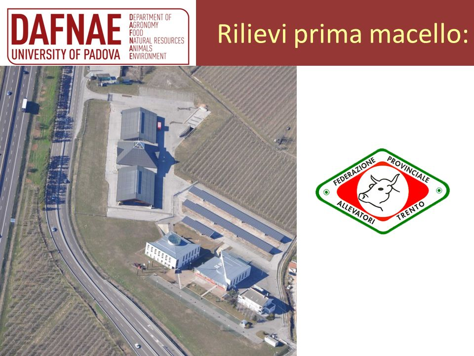 Rilievi prima macello:
