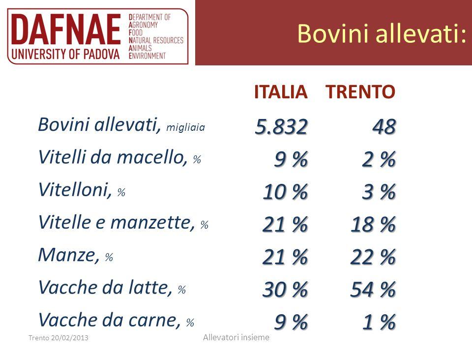 Bovini allevati: 5.832 48 9 % 2 % 10 % 3 % 21 % 18 % 22 % 30 % 54 %