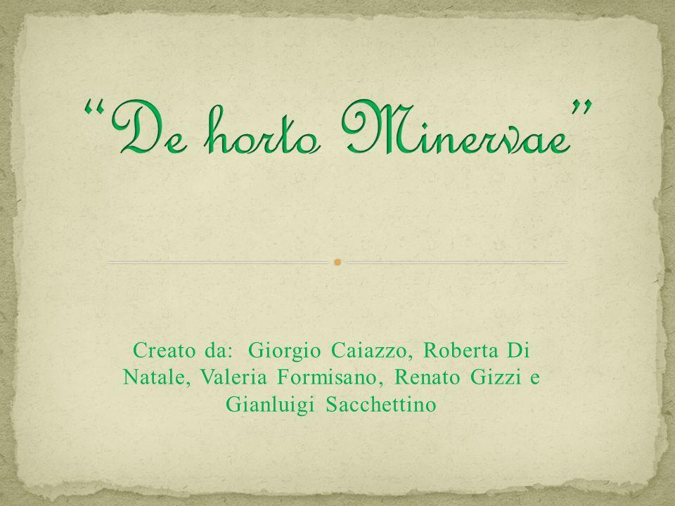 De horto Minervae Creato da: Giorgio Caiazzo, Roberta Di Natale, Valeria Formisano, Renato Gizzi e Gianluigi Sacchettino.