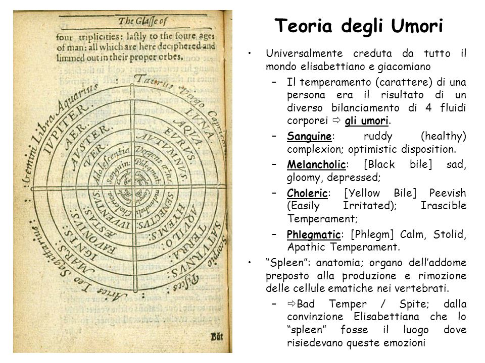 Teoria degli Umori Universalmente creduta da tutto il mondo elisabettiano e giacomiano.