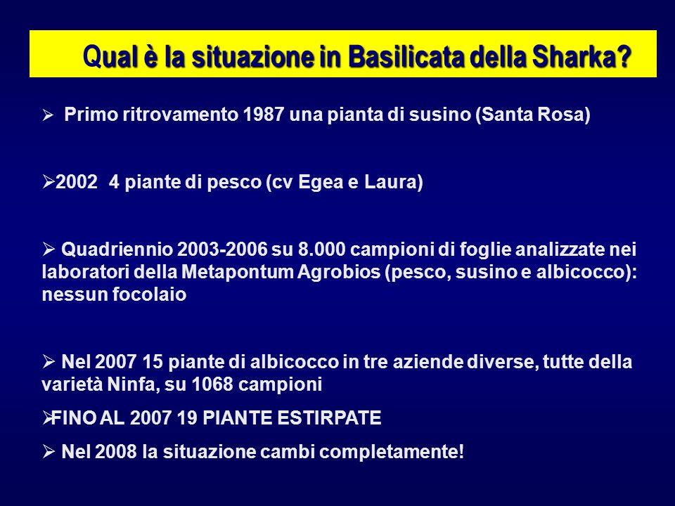 Qual è la situazione in Basilicata della Sharka