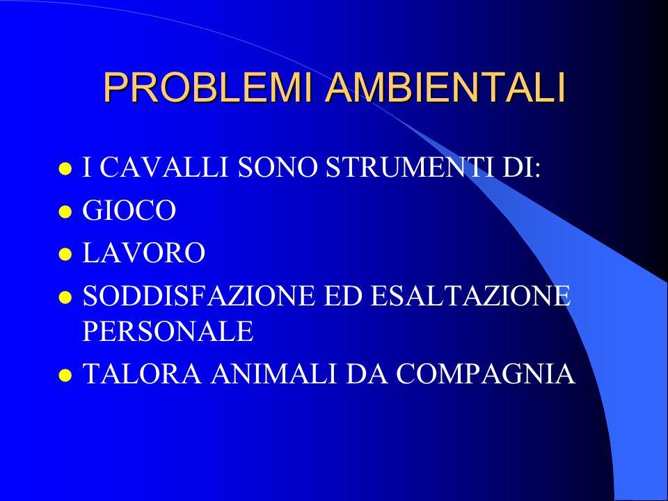 PROBLEMI AMBIENTALI I CAVALLI SONO STRUMENTI DI: GIOCO LAVORO