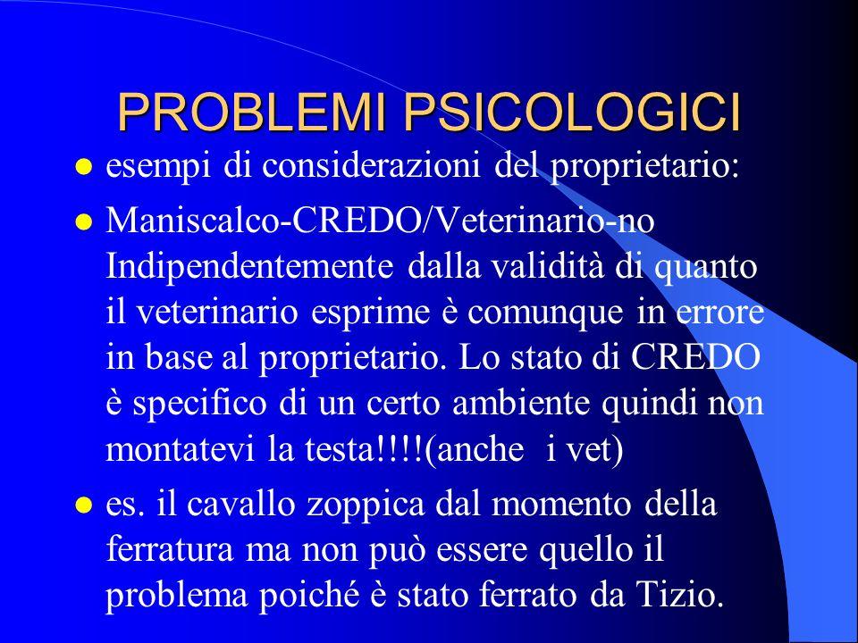 PROBLEMI PSICOLOGICI esempi di considerazioni del proprietario:
