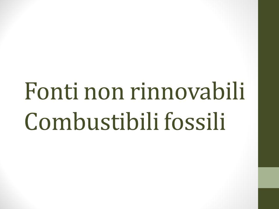 Fonti non rinnovabili Combustibili fossili