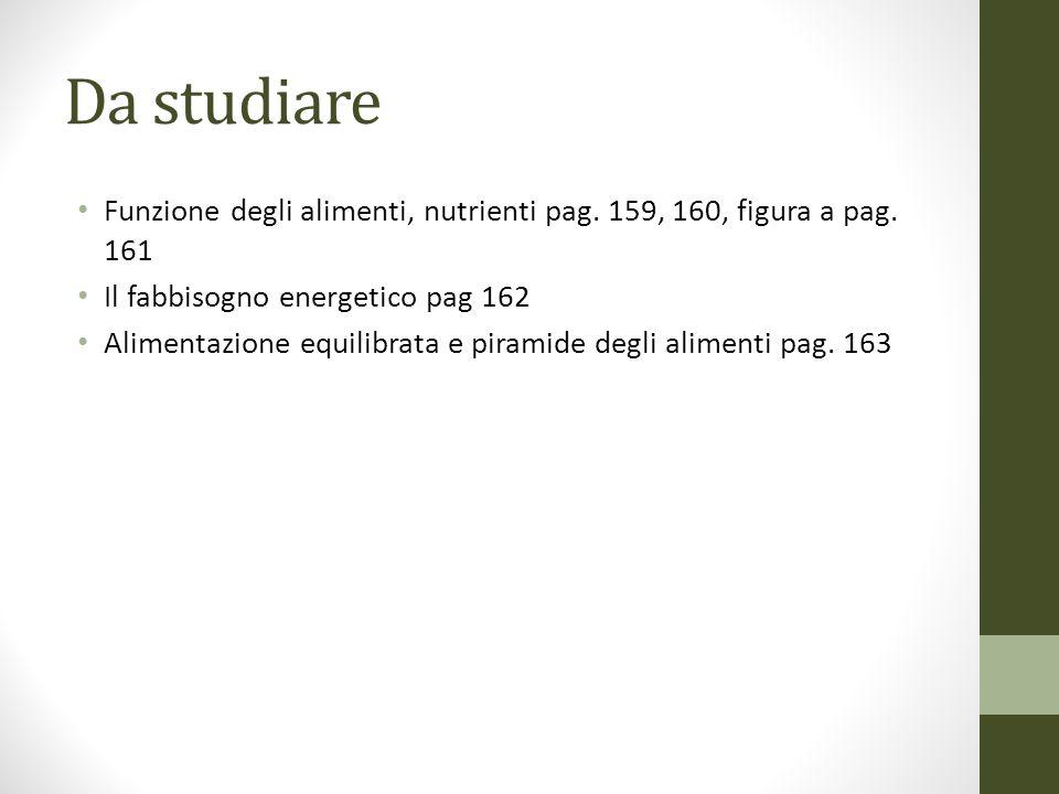 Da studiare Funzione degli alimenti, nutrienti pag. 159, 160, figura a pag. 161. Il fabbisogno energetico pag 162.