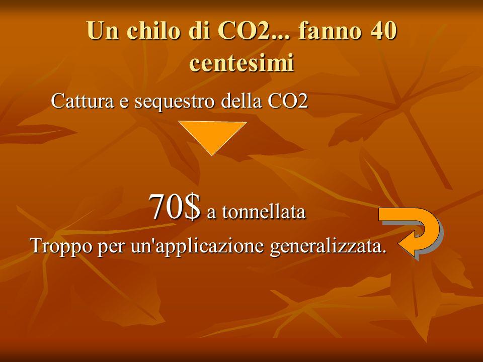 Un chilo di CO2... fanno 40 centesimi