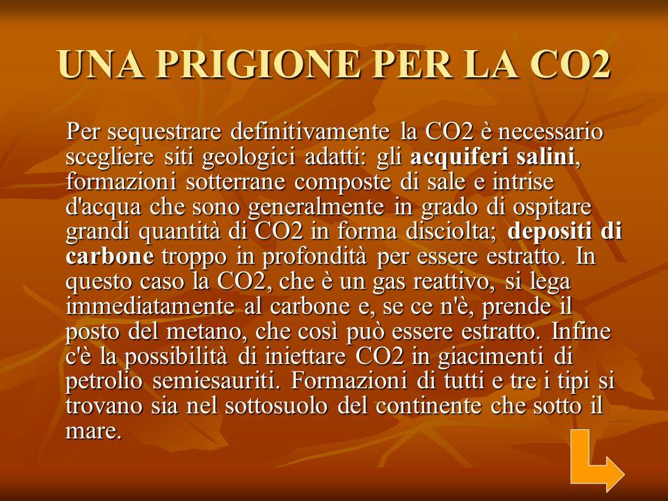 UNA PRIGIONE PER LA CO2