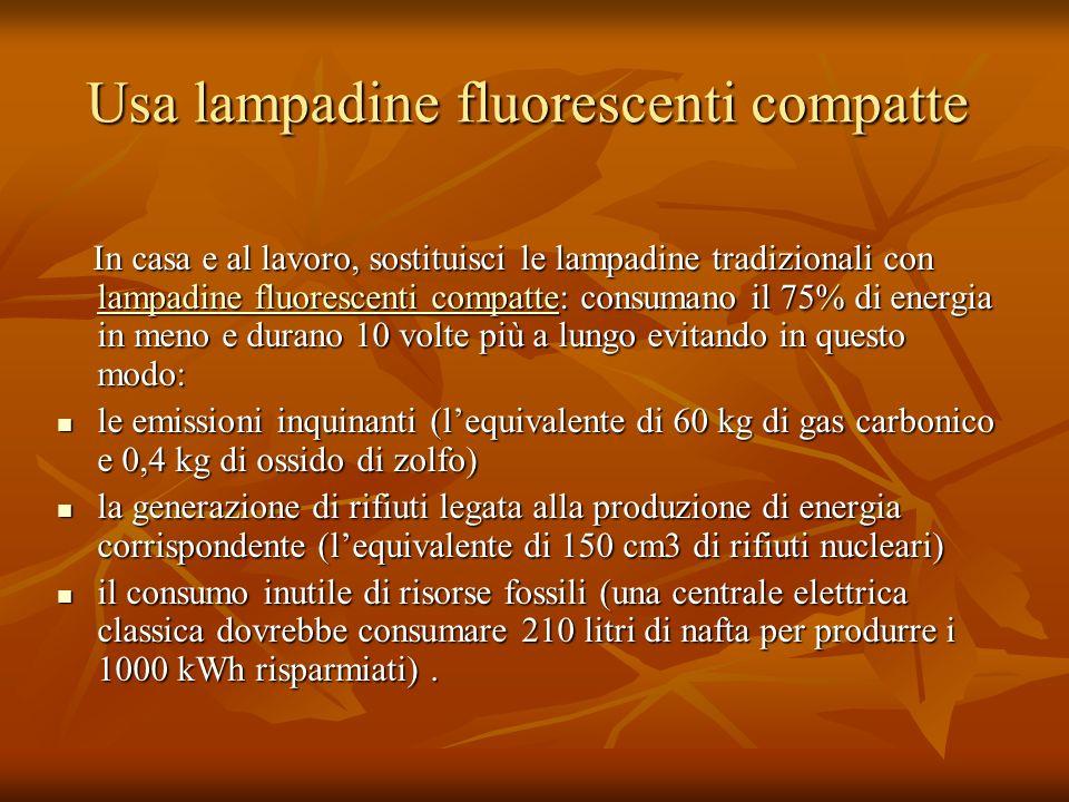 Usa lampadine fluorescenti compatte