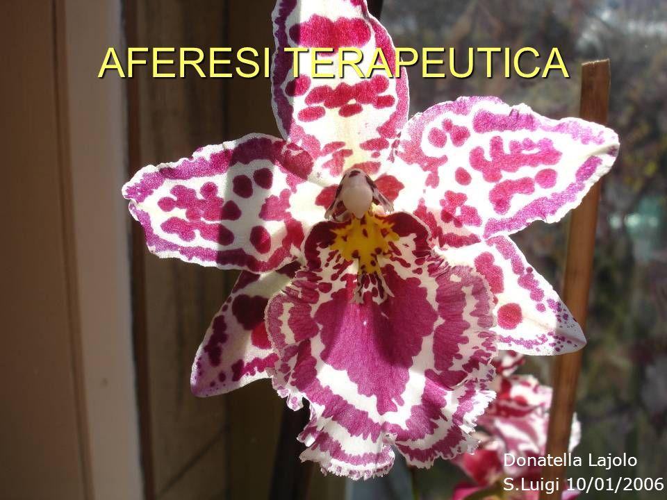 AFERESI TERAPEUTICA Donatella Lajolo S.Luigi 10/01/2006