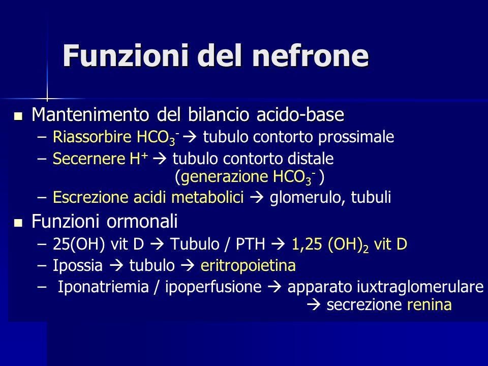 Funzioni del nefrone Mantenimento del bilancio acido-base