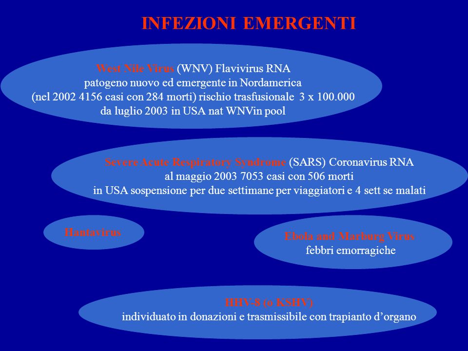 INFEZIONI EMERGENTI West Nile Virus (WNV) Flavivirus RNA