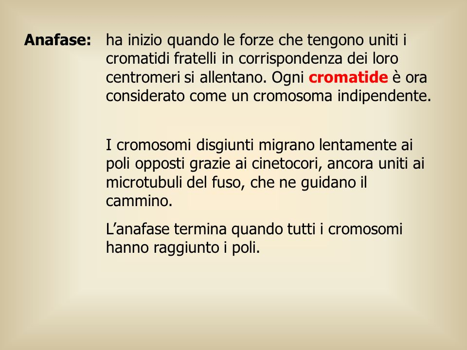 Anafase: